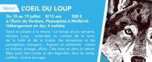 L'Oeil du Loup - Séjour 8-12 ans @ RDV au Floessplatz, Mollkirch.
