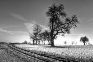Mercredi nature - Préparons l'hiver ! @ RDV salle des fêtes d'Oberhaslach