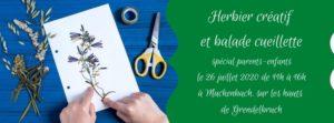 Herbier créatif et Cueillette contée   spécial parents-enfants