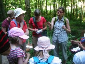 c'est studieux : Marie-Christine explique comment reconnaitre les plantes, leurs utilisations culinaires et médicinales.